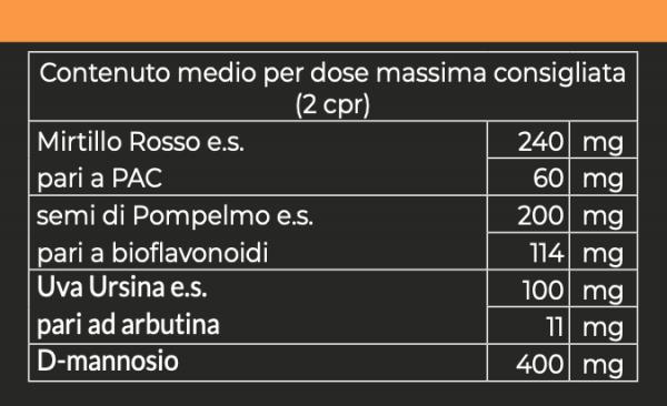 CISTIVIT 1000 mg Detail